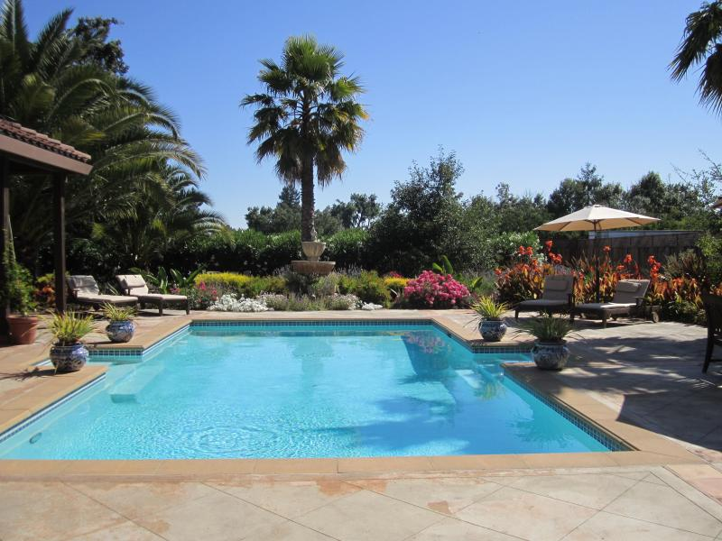 South facing pool - Las Palmas - Sonoma Resort-Like Home - Sonoma - rentals