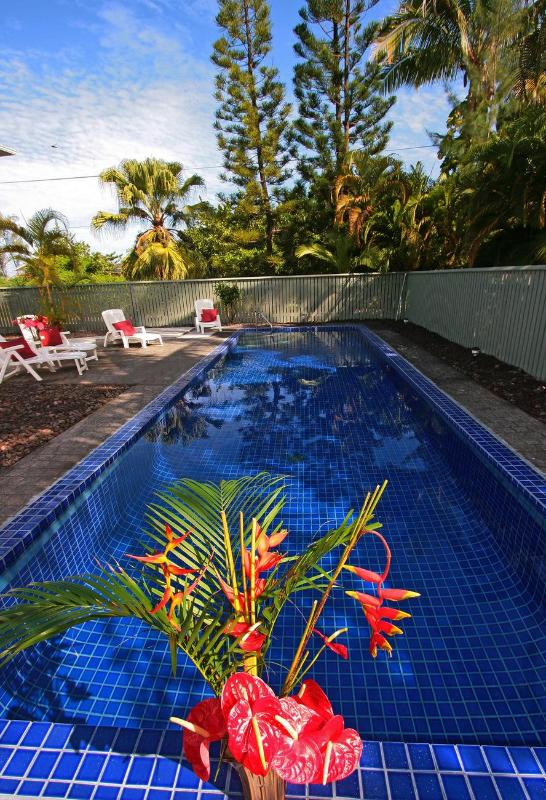 Your own beautiful, private pool - Ocean View Pool Jacuzzi 4BR 3Ba 25%OFF Feb 2015 - Keaau - rentals