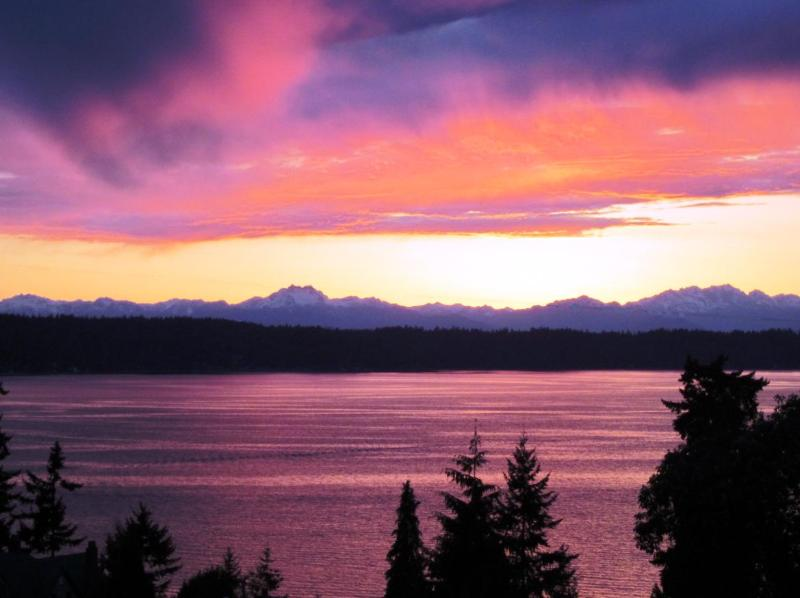 Welcome to Olympic View Private Cottage.  Enjoy our ever-changing sunsets. - Olympic View Cottage - Seattle - rentals