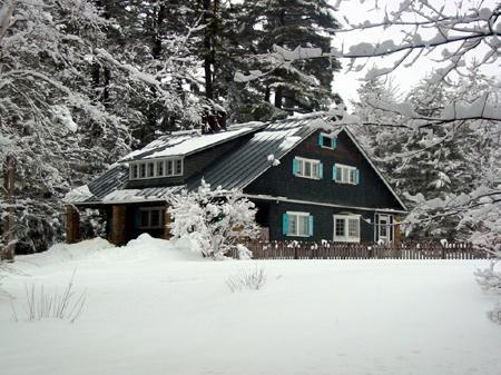 Front of the house winter - Private Mountain Retreat on 83 Acres - Perkinsville - rentals
