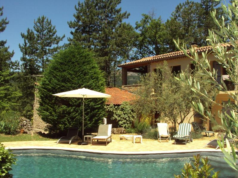 The house and pool - Stylish house and pool on private country estate - Clermont L'herault - rentals