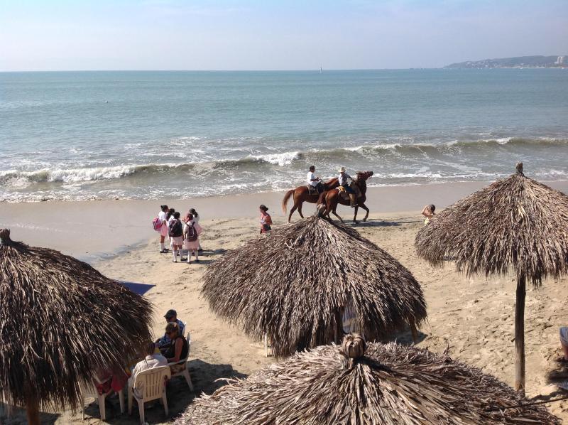 Magical ! - BUCERIAS: FLAMINGOS BEACH/NUEVO VALLARTA - Nuevo Vallarta - rentals