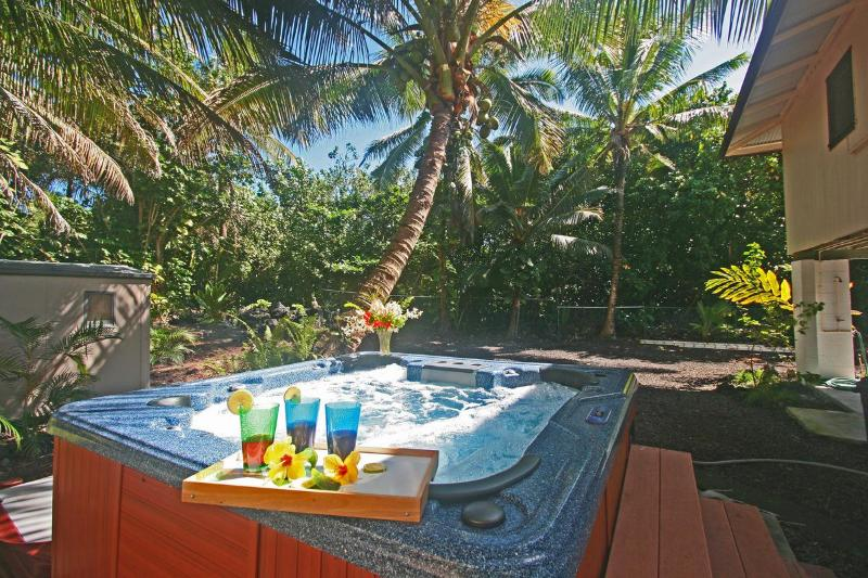Relax in the private, secluded Jacuzzi - Great Snorkel in Warm Tide Pool 25%Off  Feb  2015 - Pahoa - rentals