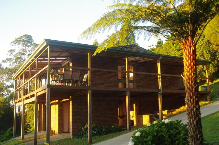 Early morning cottage - Ralda's Cottage in rainforest seclusion - Dorrigo - rentals