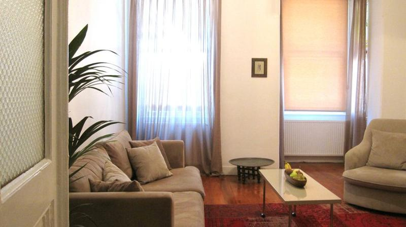 A charming Galata apartment with 3 bedrooms - Image 1 - Istanbul - rentals