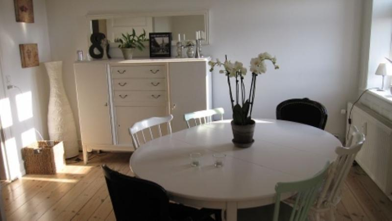 Kronprinsessegade Apartment - Beautiful Copenhagen apartment near the city centre - Copenhagen - rentals