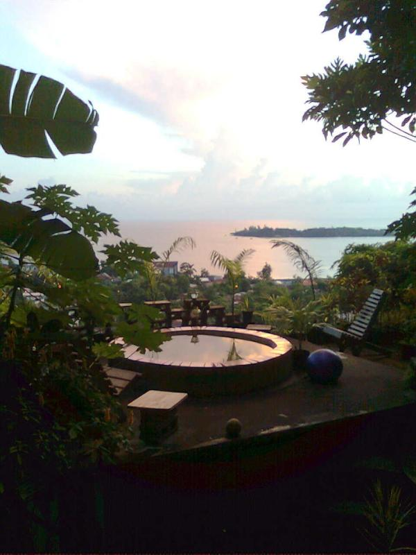 roof deck harbor view cottage..fish pond now a papaya garden..50$/nite - mango ridge ocean view cottages port antonio jam.. - Port Antonio - rentals