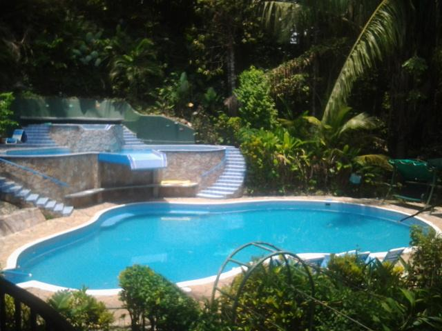 Villa has 3 pools, 2 waterfalls - 580 sq.feet Room, A/C, 3 Pools, Monkeys, Wifi - Manuel Antonio National Park - rentals