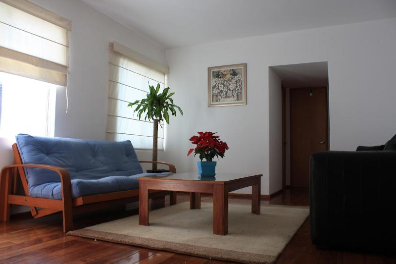 Spacious park-front apartment 20min away to center - Image 1 - Mexico City - rentals