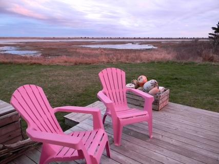 Just outside your back door is a beautiful view of a saltwater tidal pool. A side variety of bird species can be seen feeding in these pools. - A Bird's I View Cottage, Nova Scotia - Cape Sable Island - rentals