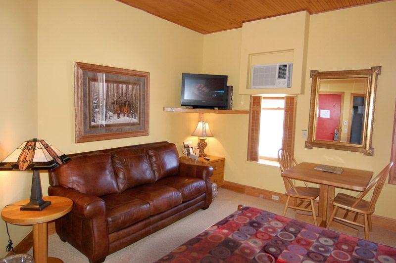 living_area_1.jpg - Indy301 - Aspen - rentals