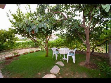 A1(2+2): terrace - 4974 A1(2+2) - Podstrana - Podstrana - rentals