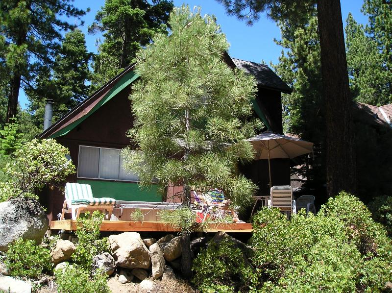 REAR DECK - Frog Cabin $175/nt $1050/wk includes 1 FREE night stay 1500 sq ft Hot Tub - Incline Village - rentals