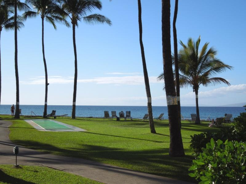 Breathtaking G-108 oceanviews and sunsets from our condo - **CALL FOR DETAILS**Kaanapali Oceanview 1 Bdrm - Ka'anapali - rentals