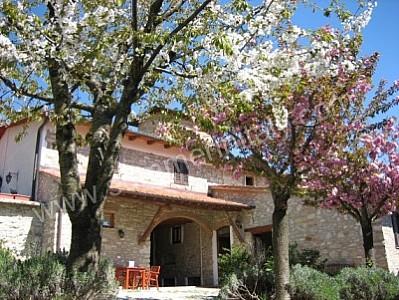 Casa Camomilla B - Image 1 - Molino del Piano - rentals