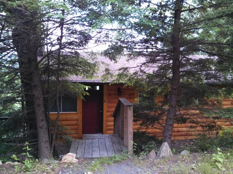 Cabin in the Clouds - Image 1 - Black Mountain - rentals