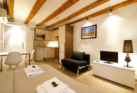 Borne Basilica Loft A - Image 1 - Barcelona - rentals