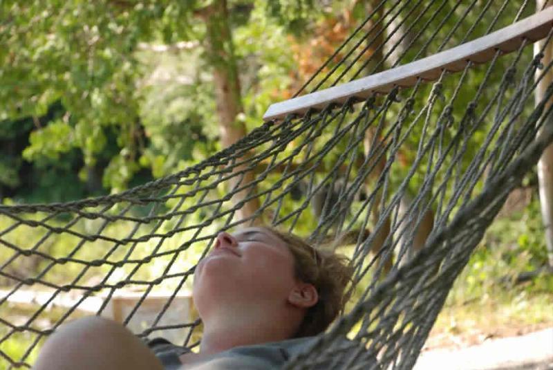 Peaceful contemplation - The SunDog Retreat - Parry Sound - rentals