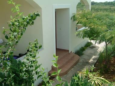 courtyard (house and surroundings) - 4984 A3(4+2) - Zaton (Zadar) - Zaton (Zadar) - rentals