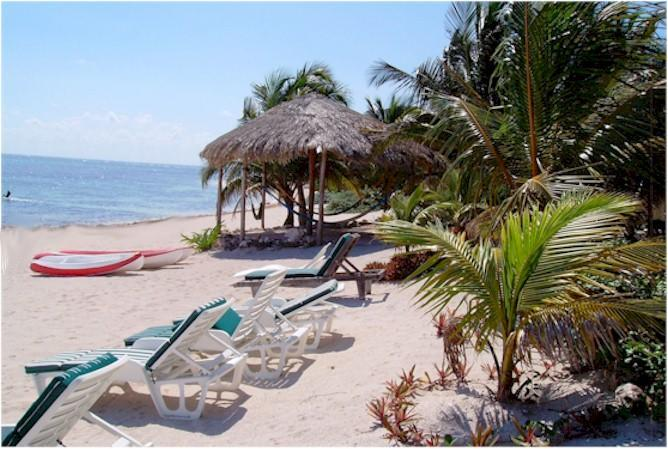 Hammock palapa and beach chairs - A real B & B on the beach in Mexico's Riviera Maya. - Tulum - rentals