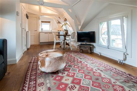 Vondelpark Suite V - Image 1 - Amsterdam - rentals
