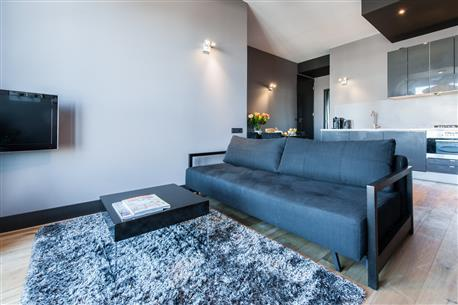 City Park Apartment IV - Image 1 - Amsterdam - rentals