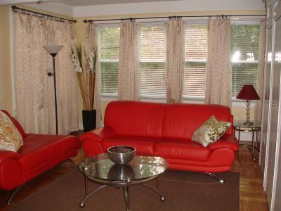 Living Room - Beautiful 2 Bedroom  in tree lined neighborhood - Bronx - rentals