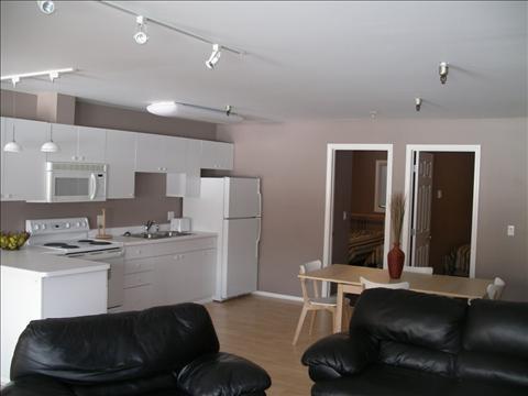 Living Room - TrierschieldBldg22 - Sitka - rentals