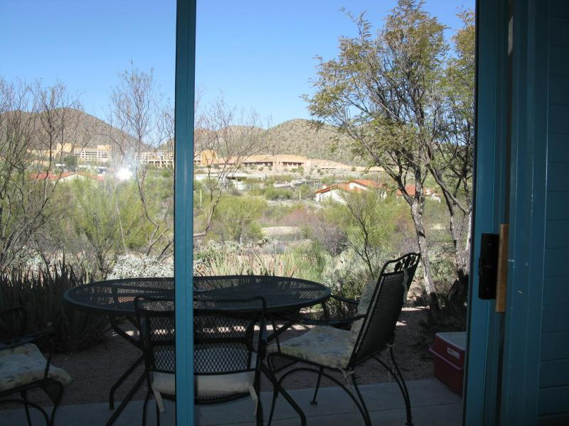 View from living room - Stunning Mountain Views at Starr Pass - Tucson - rentals