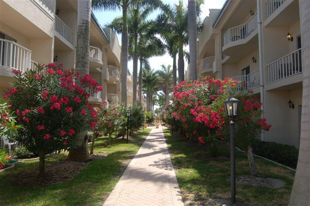 Palm Bay Club  Private Beach 3 min. - Pool, jacuzi - Image 1 - Siesta Key - rentals