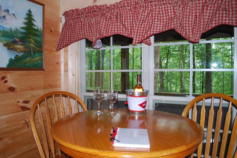 """Lovey Dovey""  cozy log cabin- unsurpased privacy. - Image 1 - Asheville - rentals"