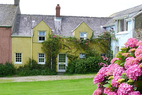 Five Star Pet Friendly Holiday Cottage - Kelwon Cottage, Orlandon, Nr St Brides Beach - Image 1 - Pembrokeshire - rentals
