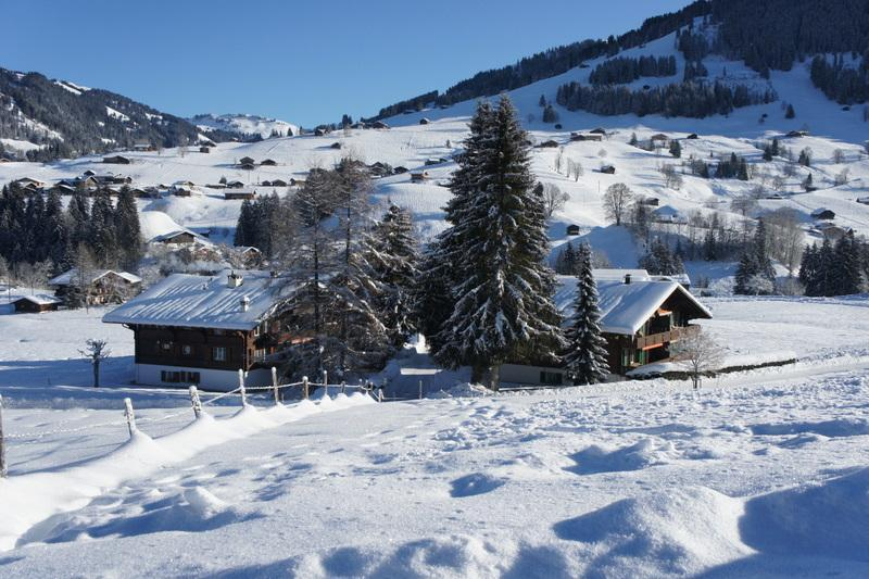 Chalet Les Silenes - Les Silenes: New luxury 6 bed chalet apt. Gstaad - Gstaad - rentals