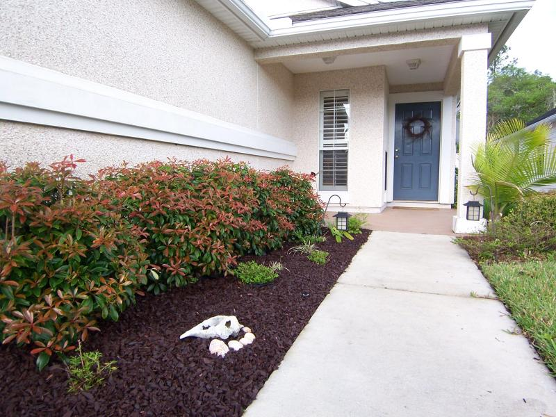 Entrance to our relaxing home - Best reviewed, spacious Home welcoming your pets. - Saint Augustine - rentals