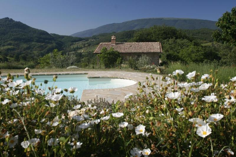 Pool and Views - Rentals with pool, holiday apartments at Assisi - Assisi - rentals