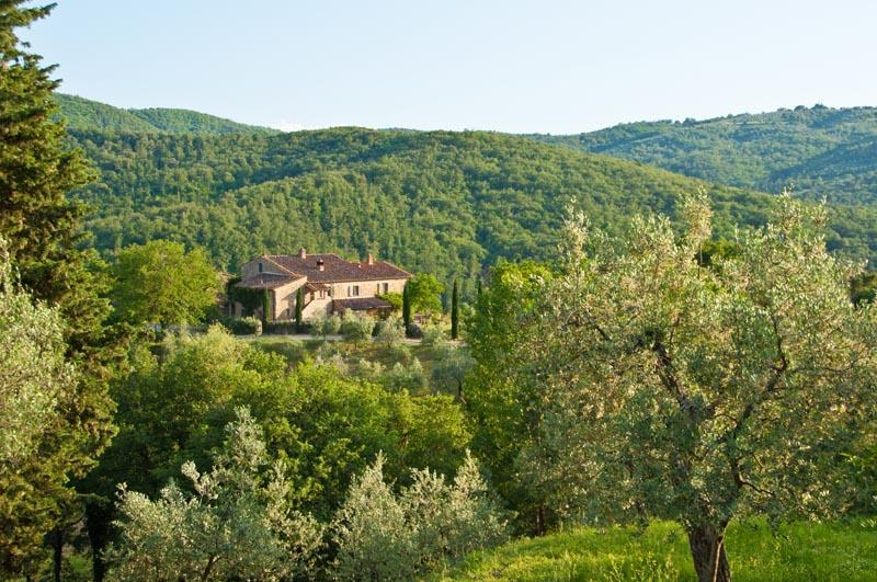 Villa Caccianello, private pool in Tuscany Italy - Image 1 - Pergine Valdarno - rentals