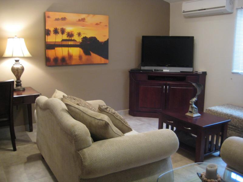Living Room with flat screen TV and DVD player - Casa Iguana luxury 2 bedroom mins. from the beach - Tamarindo - rentals