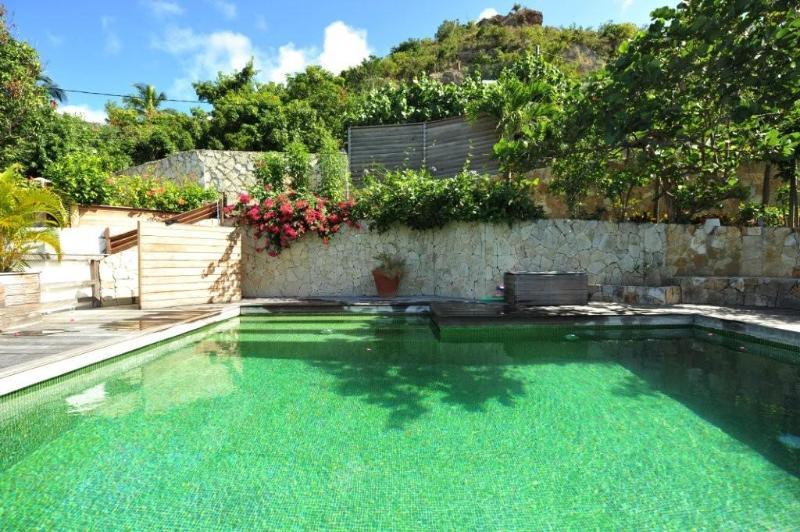 - Villa Mapou - MAP - Saint Barthelemy - rentals
