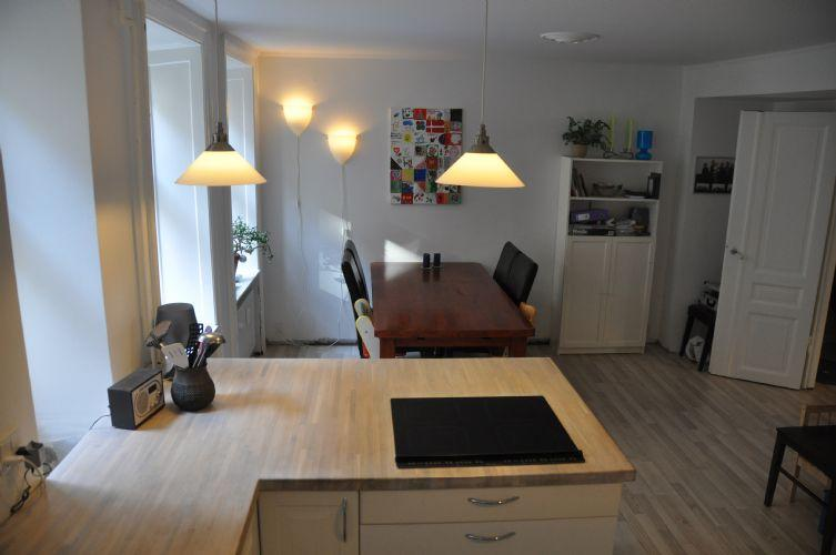 Nansensgade Apartment - Family friendly Copenhagen apartment near Noerreport St. - Copenhagen - rentals
