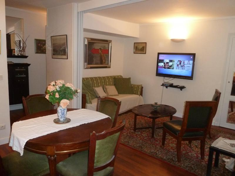 Living room with large flatscreen cable TV - Ideally located very nice one bedroom apartment - Paris - rentals