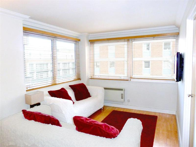 Living room with sofas, flat screen TV and large double-glazed windows - Beautiful Modern 3 Bedroom London Rental - London - rentals