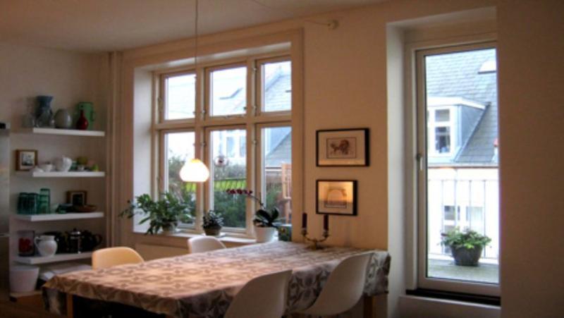 Nansensgade Apartment - Copenhagen apartment in the heart of City - Copenhagen - rentals