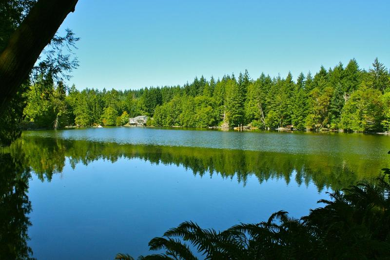 Gorgeous views on 7.7 acres of forest and waterfront - very private and peaceful - Best-Rated Waterfront Home, 7+ acres, very private - Olympia - rentals