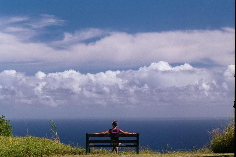 The whale-watching bench.  One of the favorite places on the property for guests to hang out. - Serene, Expansive Ocean Views, Lovely Hawaii Home - Honokaa - rentals