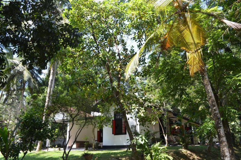 Aranga-La holiday bungalow with transport up to 100 km per day - Aranga-La Srilanka holiday bungalow with transport - Colombo - rentals
