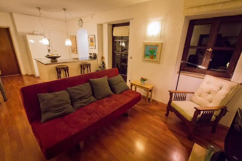 Sleeper Sofa in Living Room - Large apartment in city center! - Munich - rentals