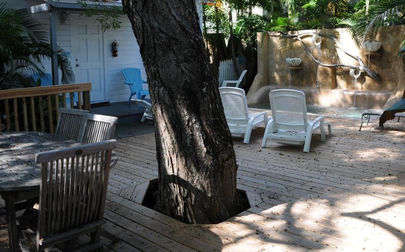 Harbor Walk Hideaways - Image 1 - Key West - rentals