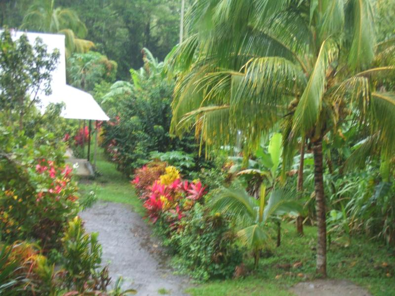 Hide-Out - Hide-Out Cottage on Nature Island Dominica - Saint Patrick Parish - rentals