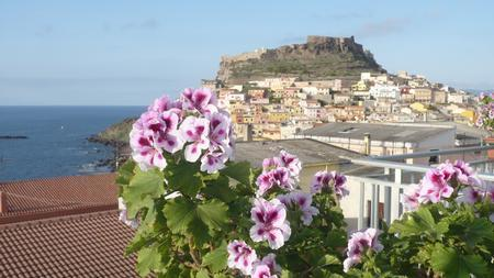 View from the terrace - Full Relax in a confidential environment - Lu Bagnu - rentals