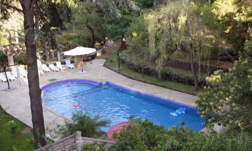 The pool area - TENUTA REALE - Puntalazzo - rentals